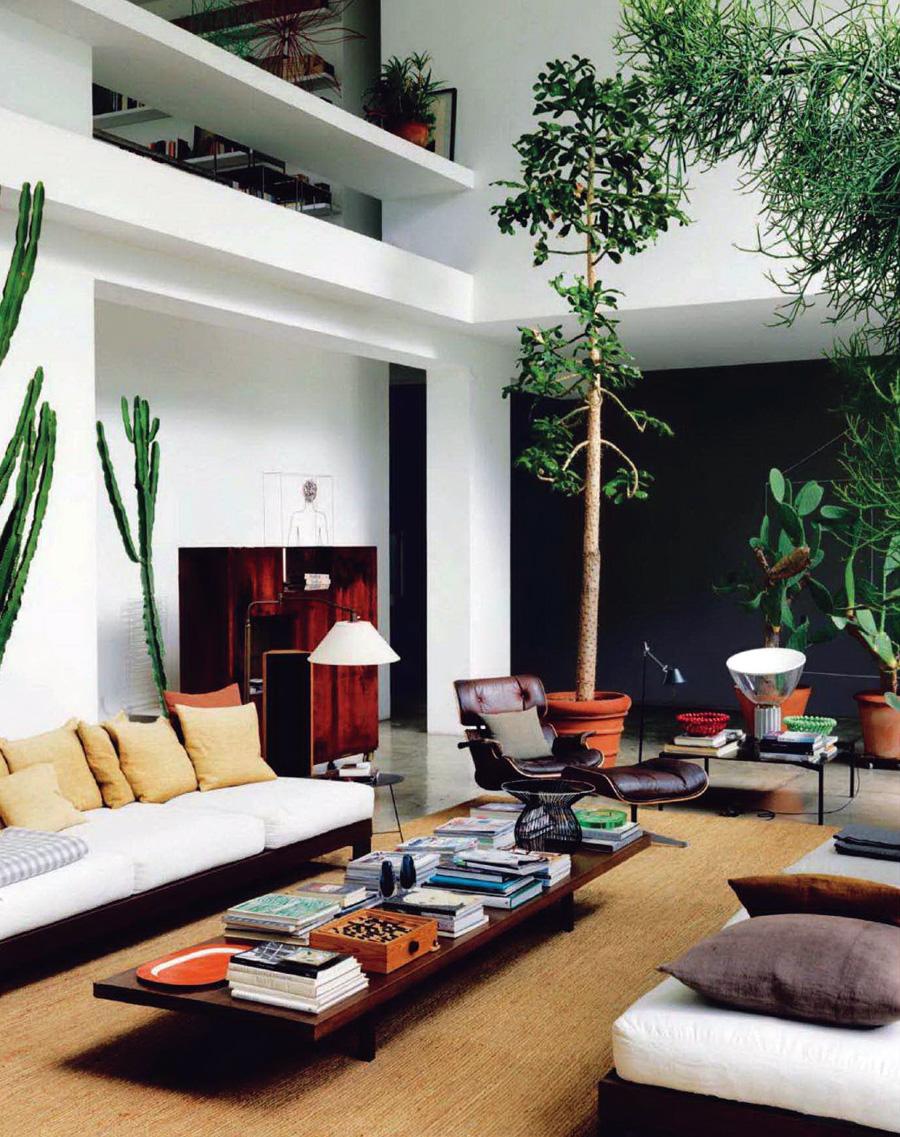 maurizio-zucchi-cactus-temple-home-2